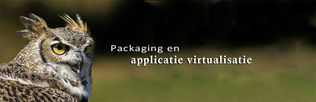 Packaging en applicatie virtualisatie